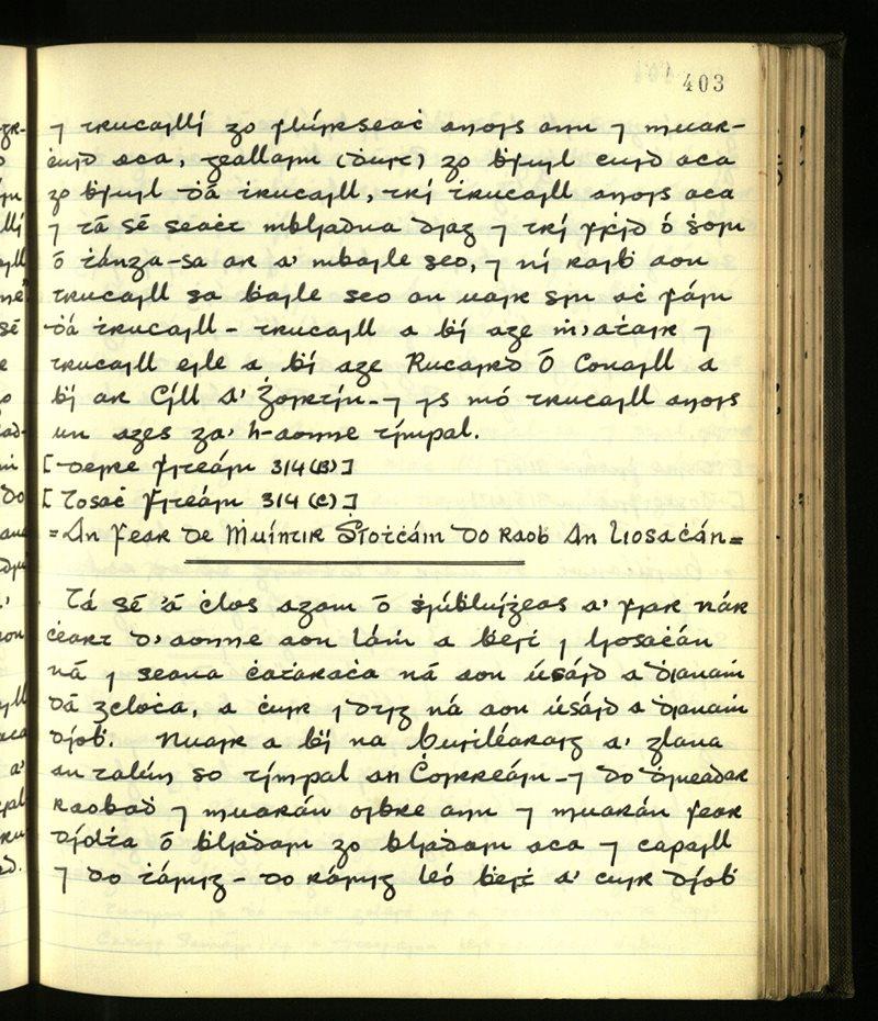 An Dromaid/Cill Chrócháin | An Príomhbhailiúchán Lámhscríbhinní