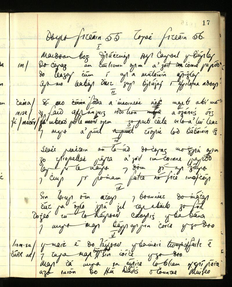 """""""Maidean bhog dhrúchtmhar idir Caiseal is Dúrlas..."""""""