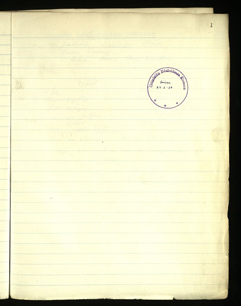 Annaghdown   The Main Manuscripts Collection