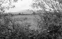 Settlement: landscape
