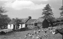Settlement: housebuilding
