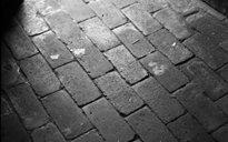 Settlement: floors