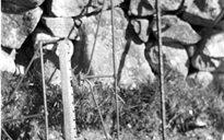 Slite Beatha agus Tíos: iascach