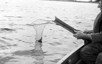 Livelihood & Housekeeping: fishing
