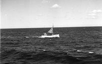 Livelihood & Housekeeping: fishing boats