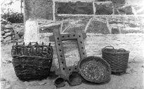Slite Beatha agus Tíos: caoladóir