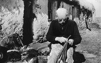 Slite Beatha agus Tíos: gréasaí