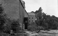 Slite Beatha agus Tíos: muilleoireacht