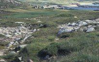 An Dúlra: oileáin