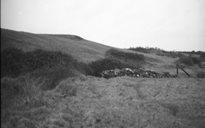 An Dúlra: toibreacha beannaithe (Connachta)