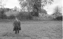 An Dúlra: toibreacha beannaithe (Laighin)