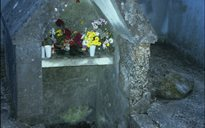 Nature: holy wells (Leinster)