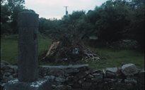 Am agus Féilte: Lá Fhéile Sin Seáin