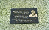 Bailiú Béaloidis: oifigigh Choimisiún Béaloideasa Éireann