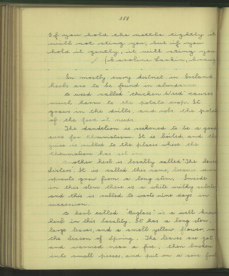 Caitrín Naomhtha, Eachdhruim | Bailiúchán na Scol