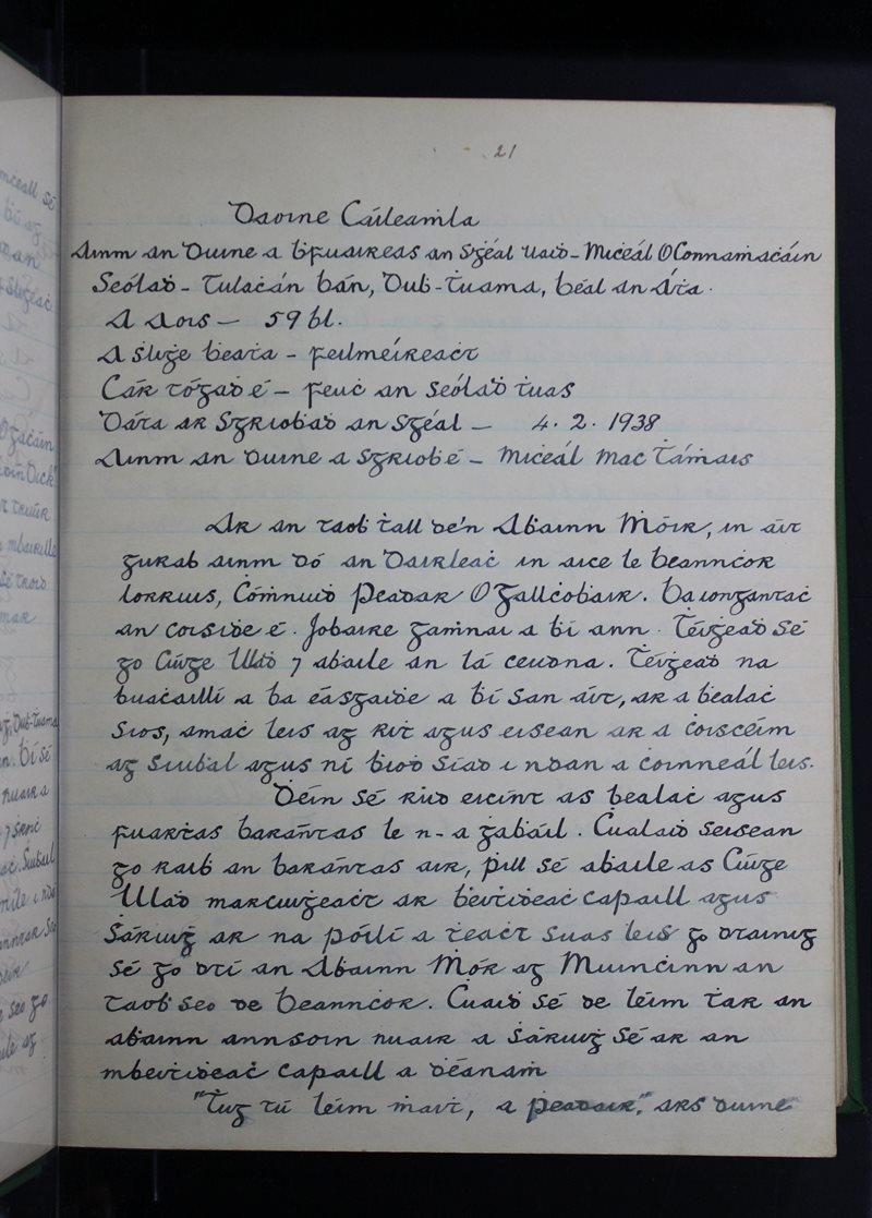 Daoine Cáiliúla