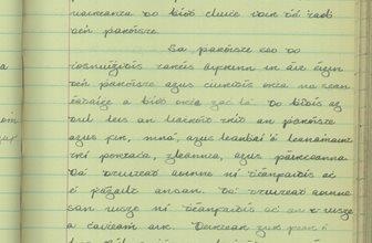 Cluiche Peile agus Iomána