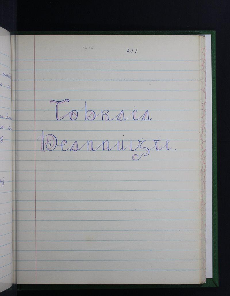 Toibreacha Beannaithe - Dhá Thobar Bheannaithe