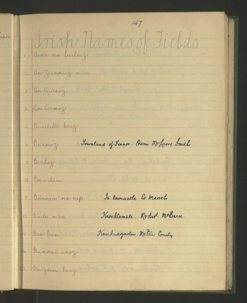 Irish Names of Fields