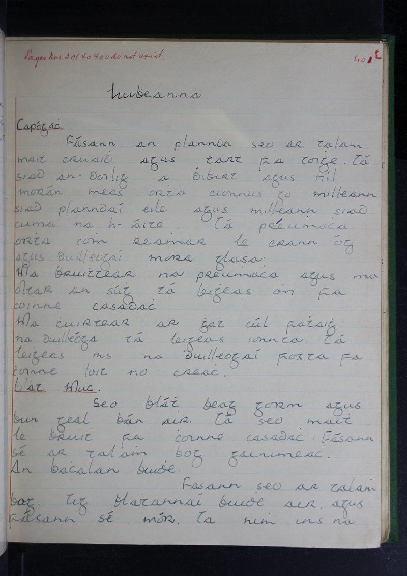 Luibheanna